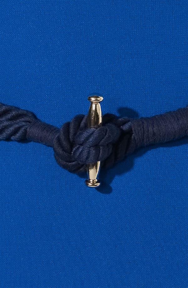Alternate Image 3  - Lauren Ralph Lauren Belted Dress (Plus Size)
