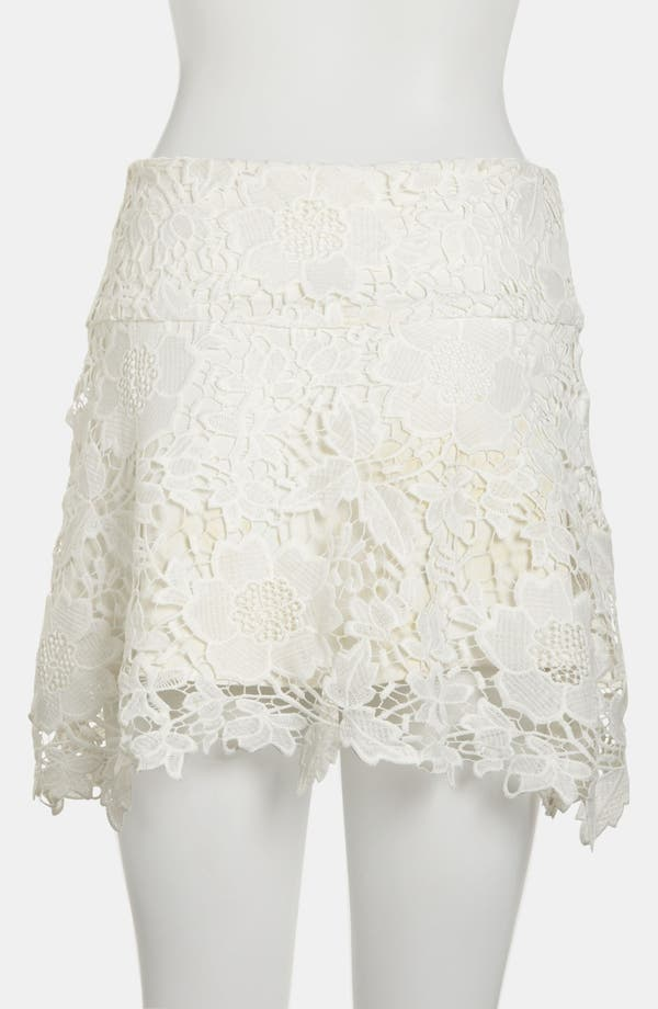Alternate Image 2  - WAYF Embroidered Lace Skirt