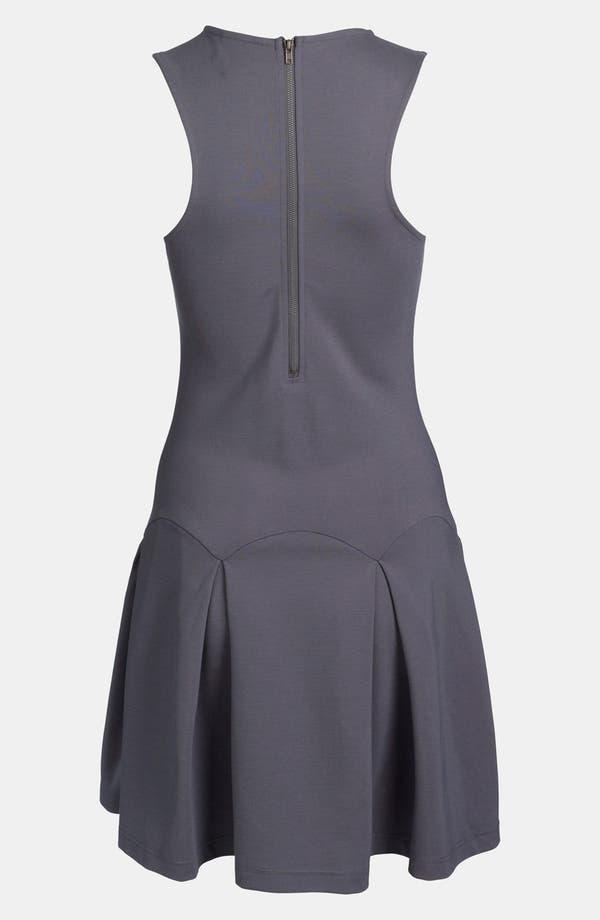 Alternate Image 2  - Devlin Pleated Dress
