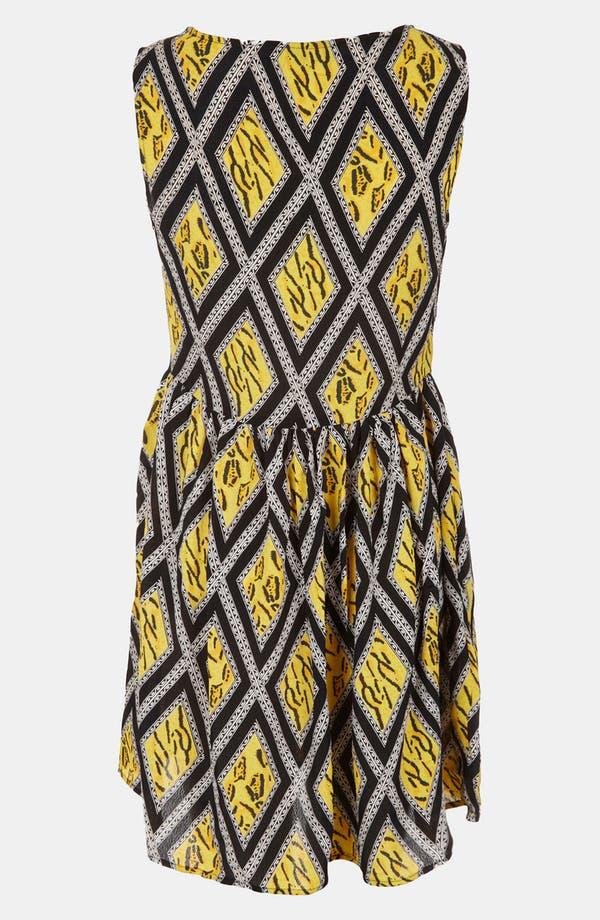 Alternate Image 2  - Topshop 'Tiger Lattice Print' Skater Dress