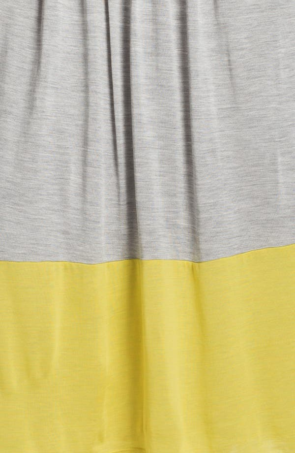 Alternate Image 3  - Eileen Fisher Pleated Colorblock Midi Skirt (Plus Size)