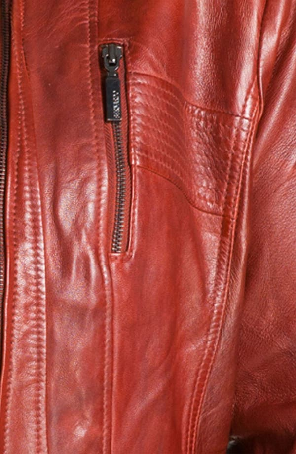 Alternate Image 3  - Bernardo Leather Scuba Jacket (Plus) (Online Exclusive)