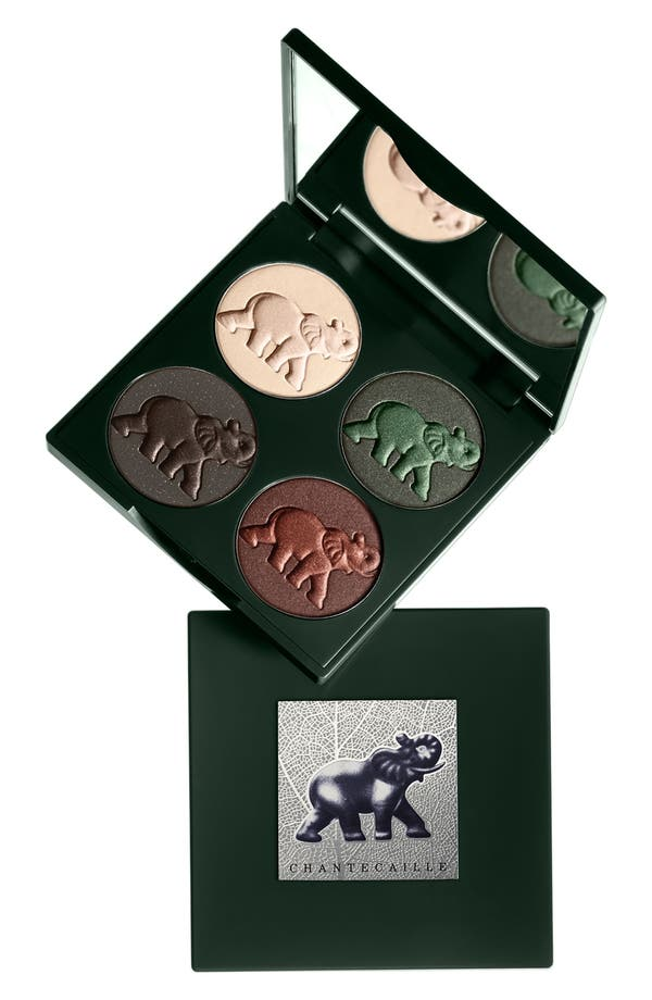 Alternate Image 1 Selected - Chantecaille 'The Elephant' Eye Palette
