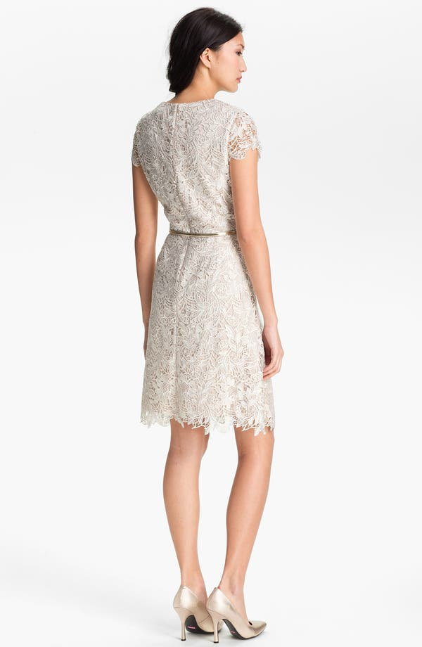 Alternate Image 2  - Eliza J Belted Lace Dress