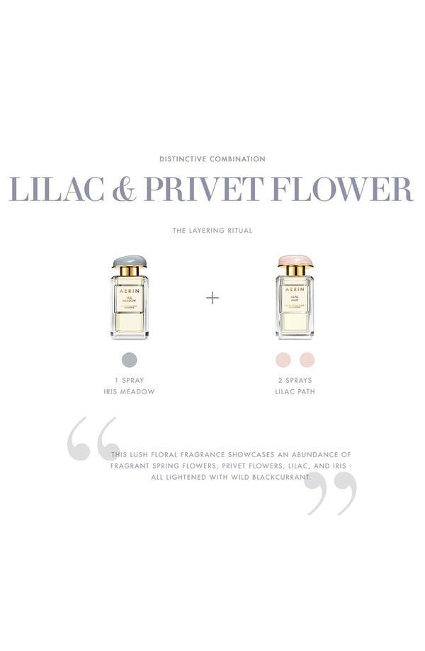 Alternate Image 4  - AERIN Beauty 'Iris Meadow' Eau de Parfum