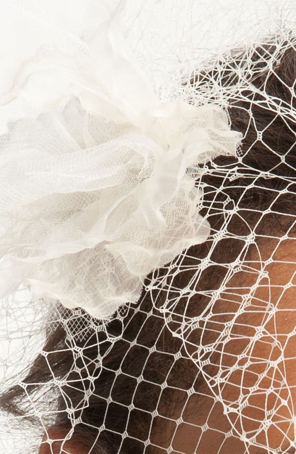 Alternate Image 2  - Nina 'Maize' Birdcage Veil