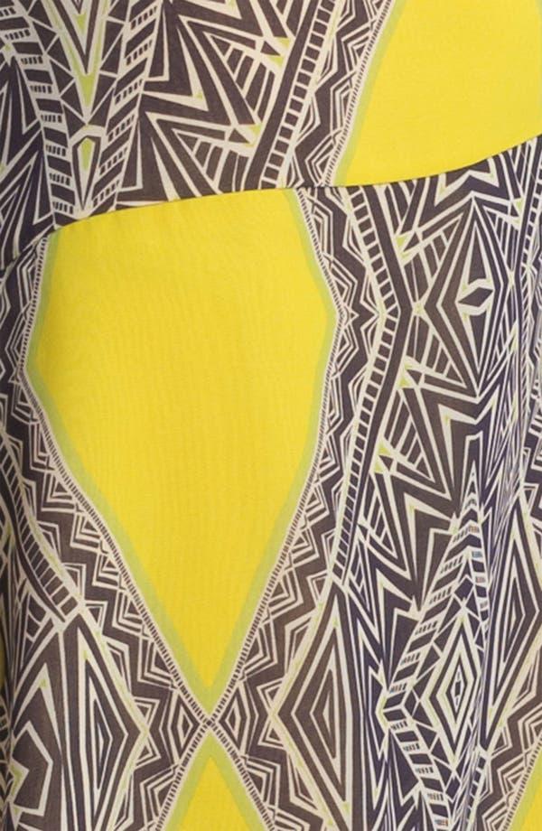Alternate Image 3  - Kay Celine Print Drop Waist Dress