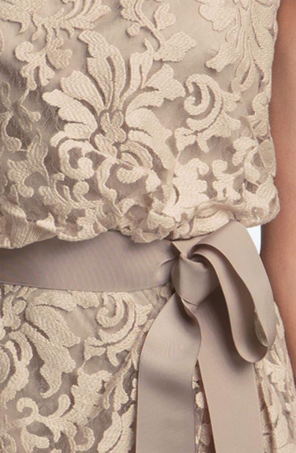 Alternate Image 3  - Tadashi Shoji Lace Overlay Ribbon Dress