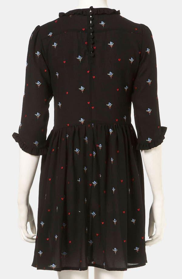 Alternate Image 2  - Topshop Embroidered Tea Dress