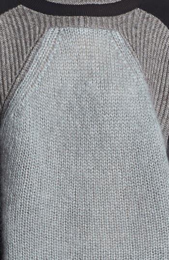 Alternate Image 4  - Helmut Lang Colorblock Turtleneck Sweater