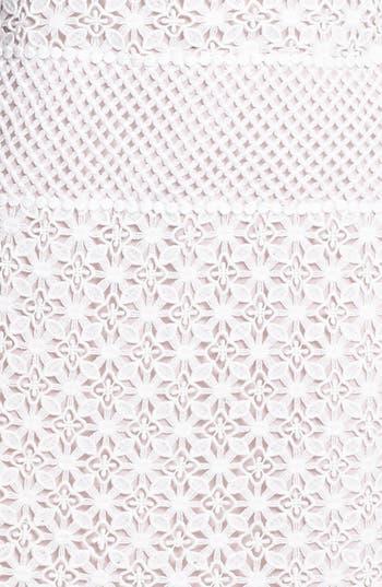 Alternate Image 3  - Ivy & Blu Mixed Lace Dress (Petite)