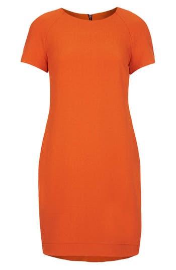 Alternate Image 3  - Topshop Crepe Shift Dress