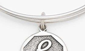 E - Rafaelian Silver swatch image