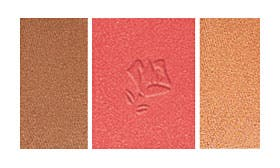 192 Rouge Allure swatch image