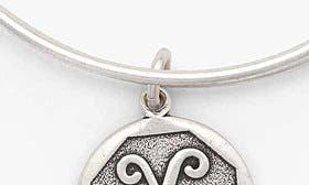 X - Rafaelian Silver swatch image
