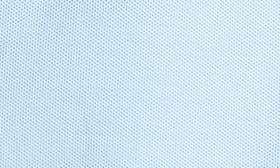 Blue Powder swatch image
