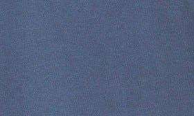 Blue Blazer swatch image