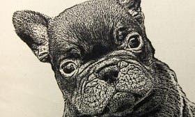 French Bulldog swatch image