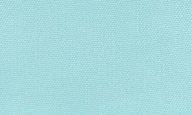 Blue Tint swatch image
