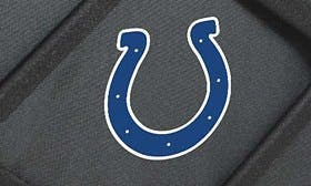 Indianapolis Colts swatch image