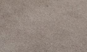 Grey Frost Suede swatch image