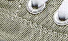 Dried Sage swatch image