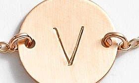 14K Gold Fill V swatch image