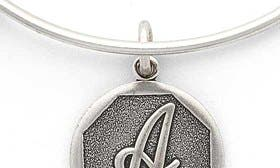 A - Rafaelian Silver swatch image