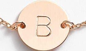 14K Gold Fill B swatch image