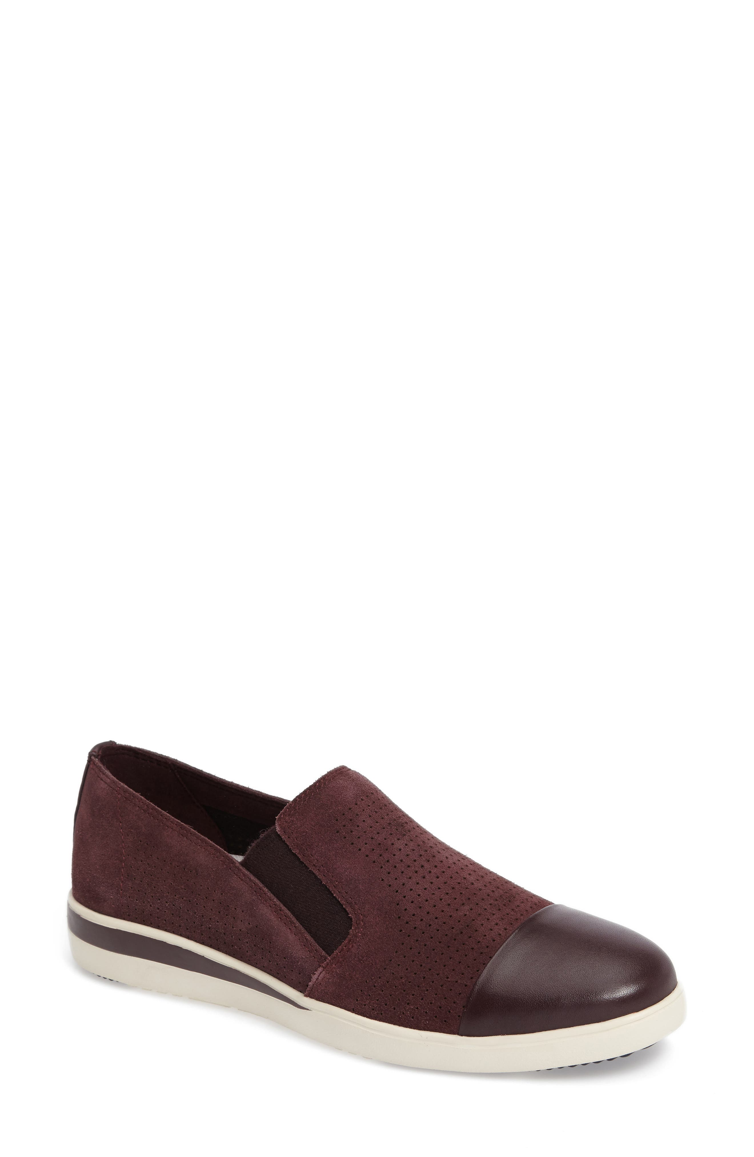 ED Ellen DeGeneres Aviana Cap Toe Slip-On Sneaker (Women)