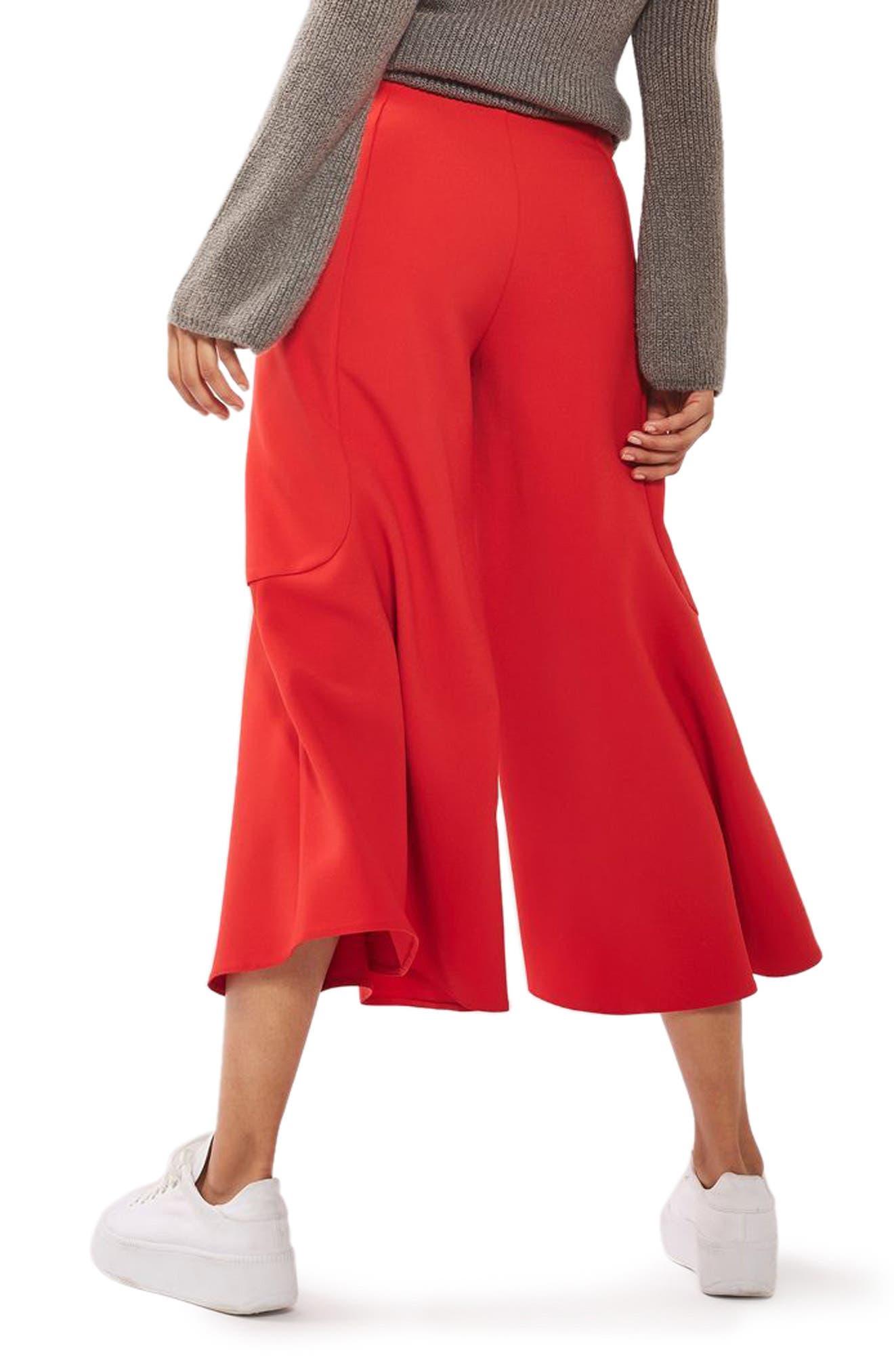 Alternate Image 3  - Topshop Meg Zip Frill Palazzo Trousers