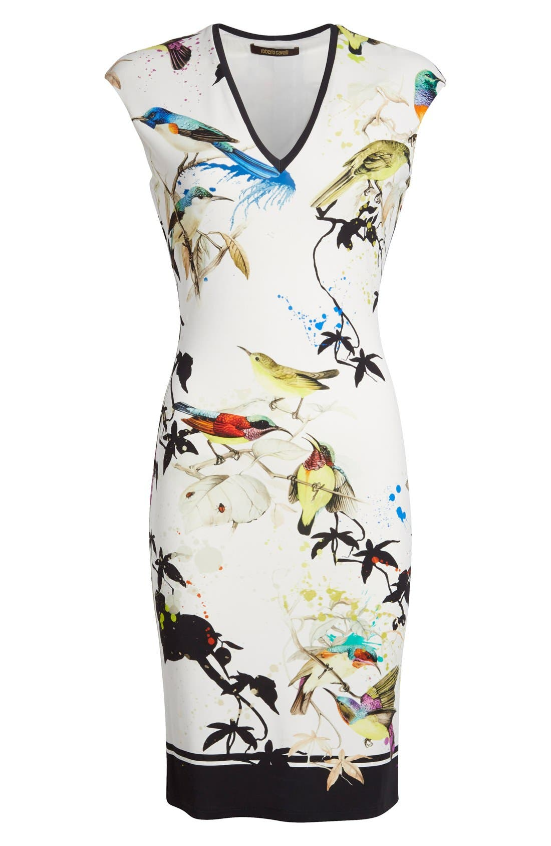 Alternate Image 4  - Roberto Cavalli Bird & Floral Print Jersey Dress