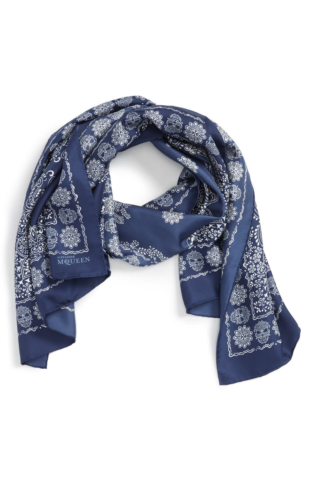 Alternate Image 1 Selected - Alexander McQueen Oblong Scarf