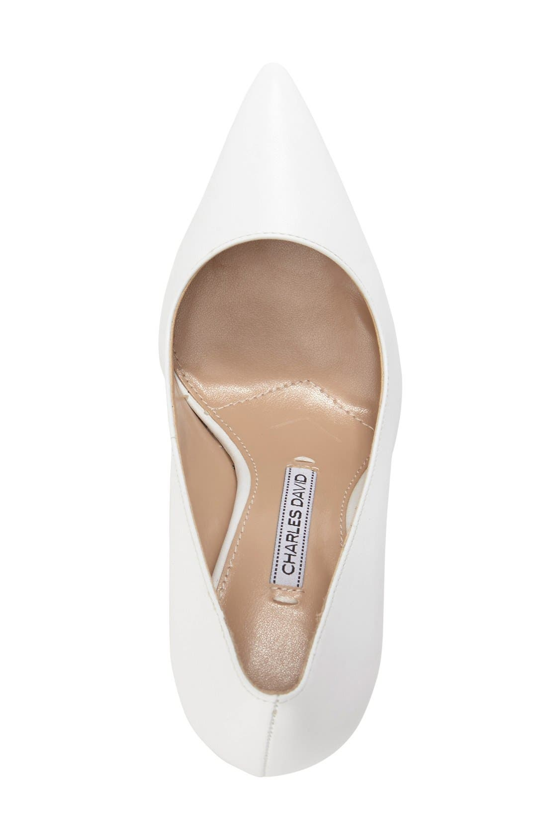 Alternate Image 3  - Charles David 'Caterina' Pointy Toe Pump (Women) (Online Only)