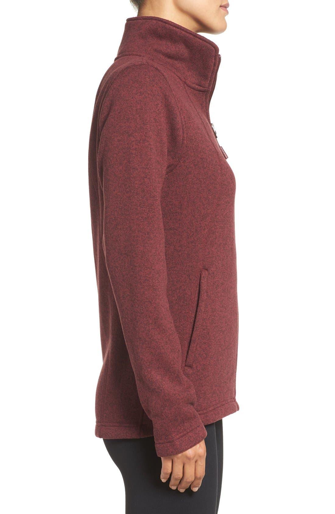 Alternate Image 3  - The North Face Crescent Fleece Jacket