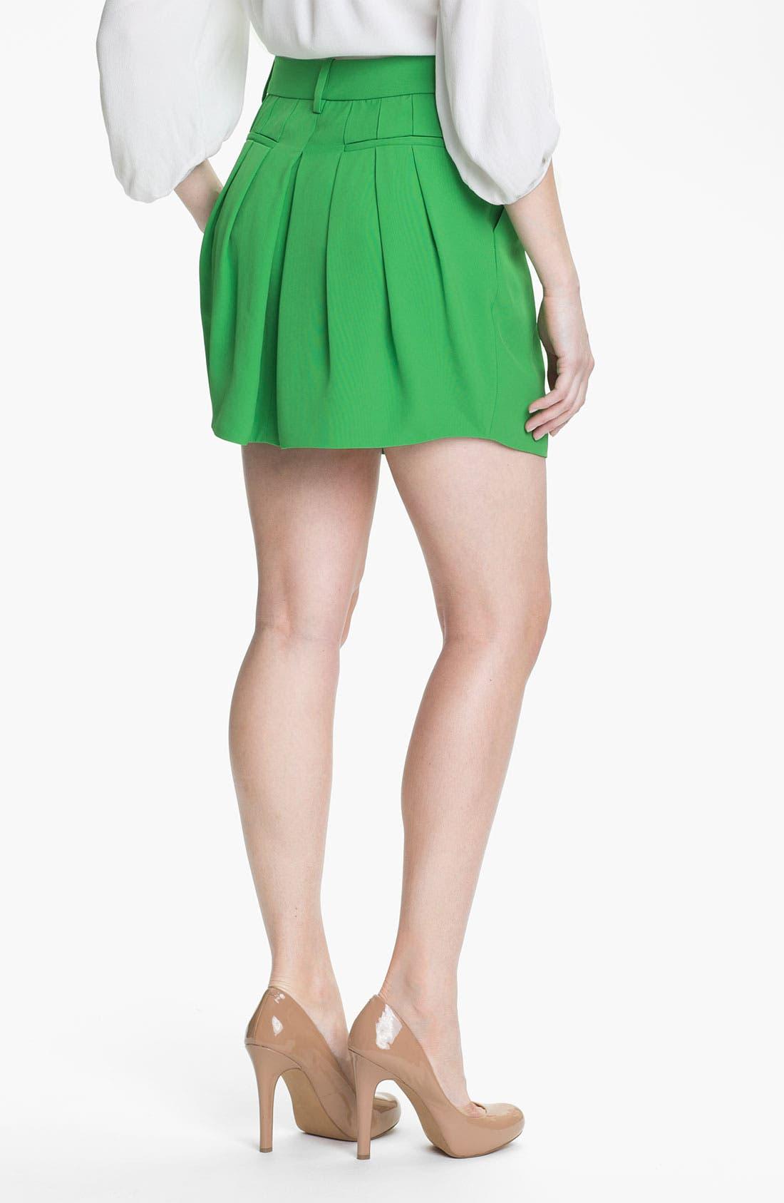 Alternate Image 2  - Diane von Furstenberg 'Angelica' Skirt