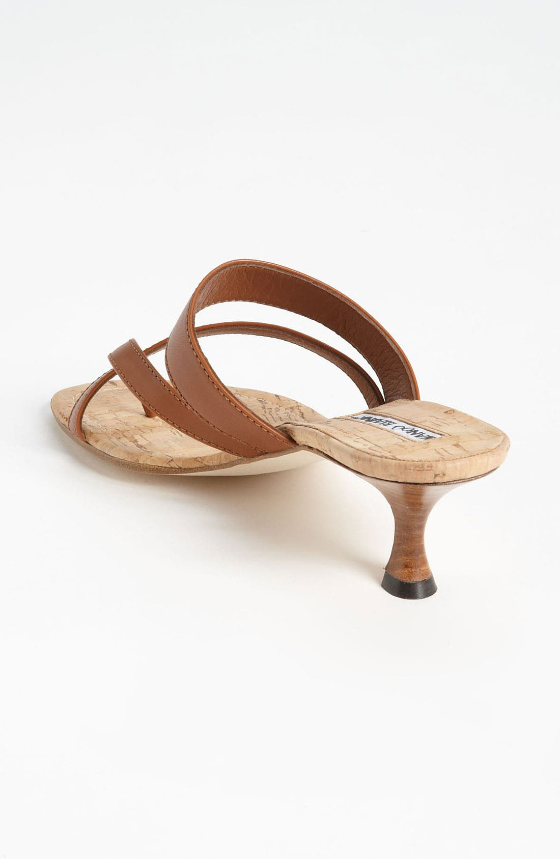 Alternate Image 2  - Manolo Blahnik 'Susa' Sandal