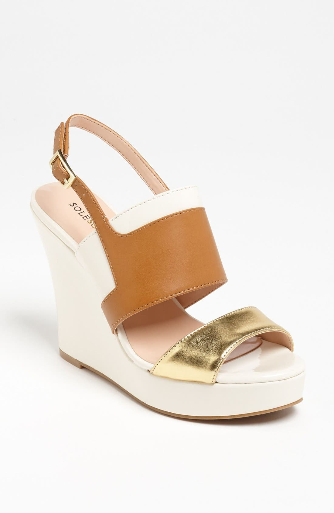 Alternate Image 1 Selected - Sole Society 'Joan' Wedge