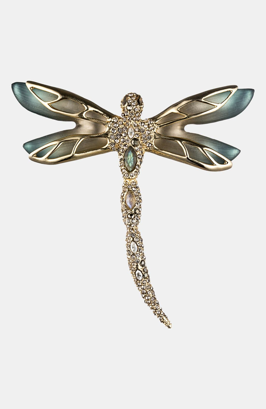 Alternate Image 1 Selected - Alexis Bittar 'Lucite® - Neo Bohemian' Pavé Dragonfly Pin