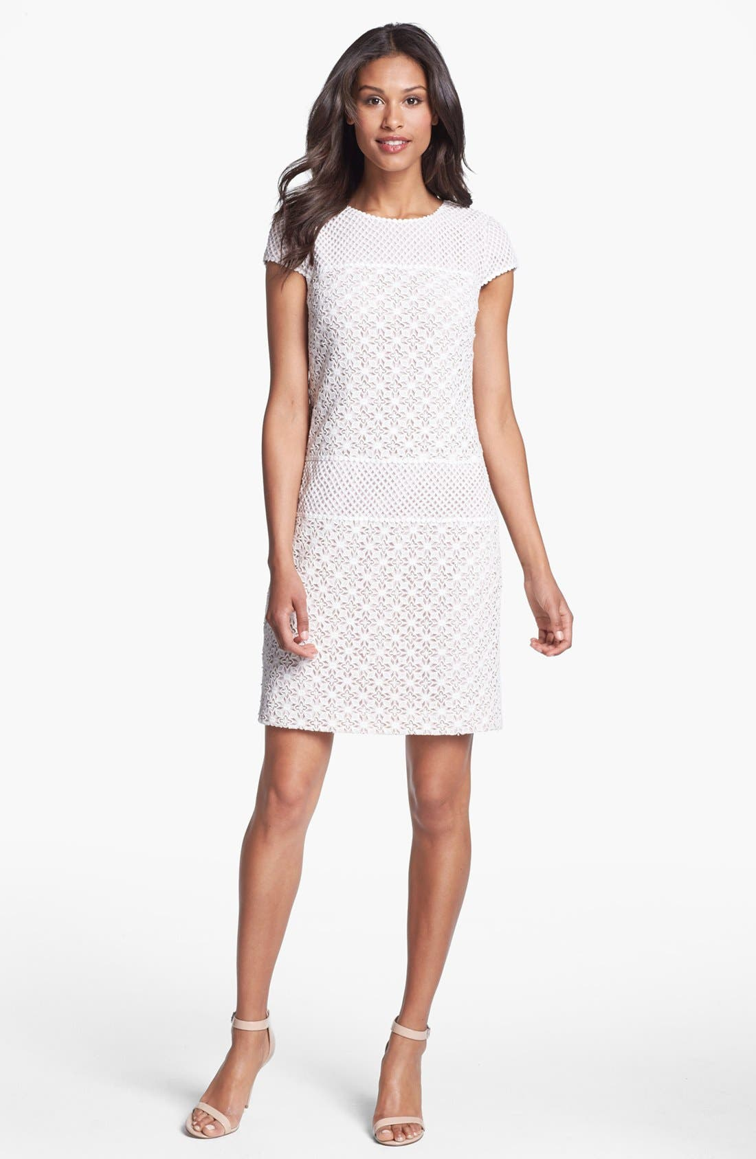 Alternate Image 1 Selected - Ivy & Blu Mixed Lace Dress (Petite)