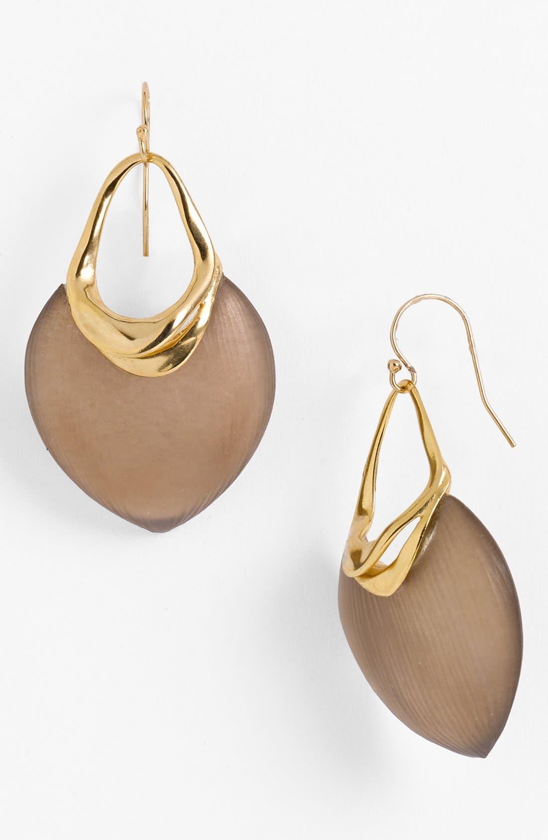 Alternate Image 1 Selected - Alexis Bittar 'O'Keeffe' Shield Earrings