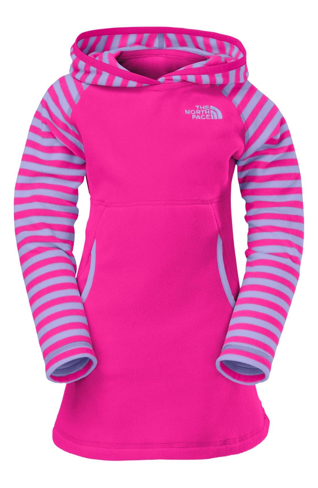 Alternate Image 1 Selected - The North Face 'Glacier' Dress (Toddler Girls)