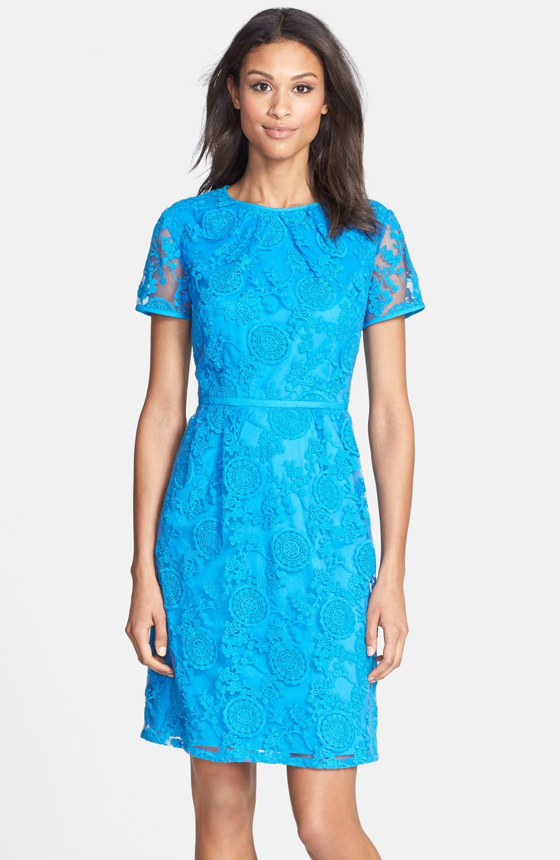 Alternate Image 1 Selected - Adrianna Papell Embroidered Lace Dress