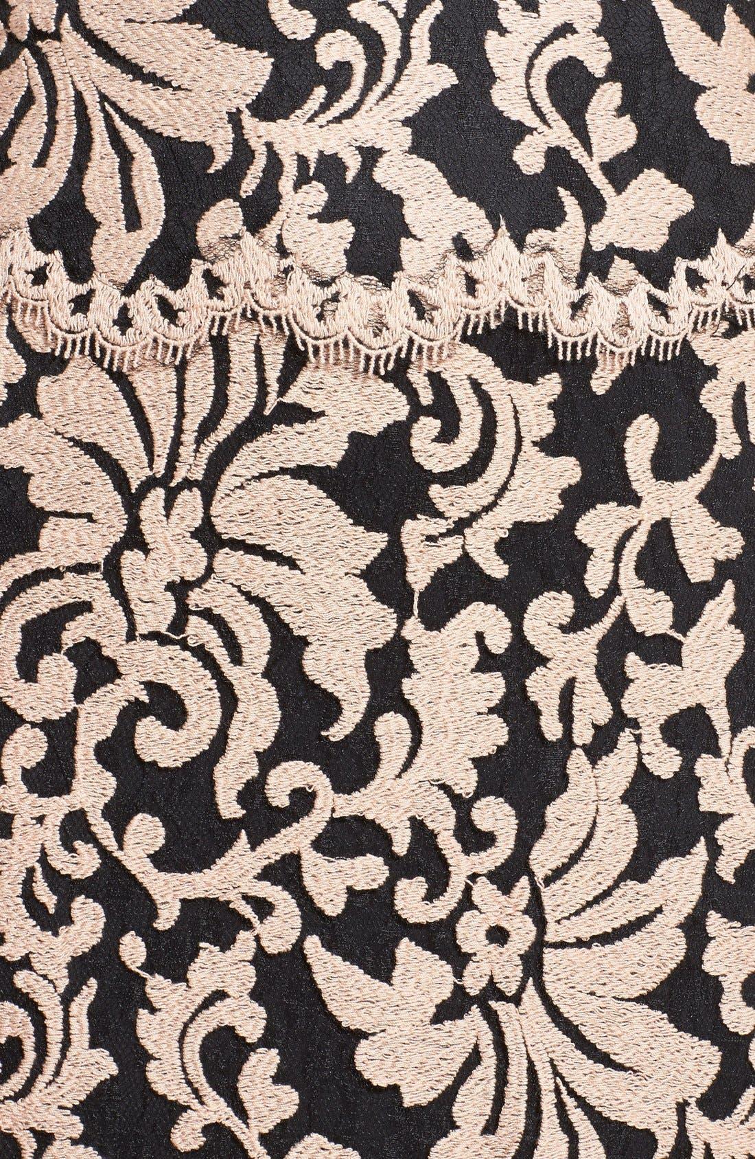 Alternate Image 3  - Tadashi Shoji Belted Embroidered Lace Gown (Regular & Petite)