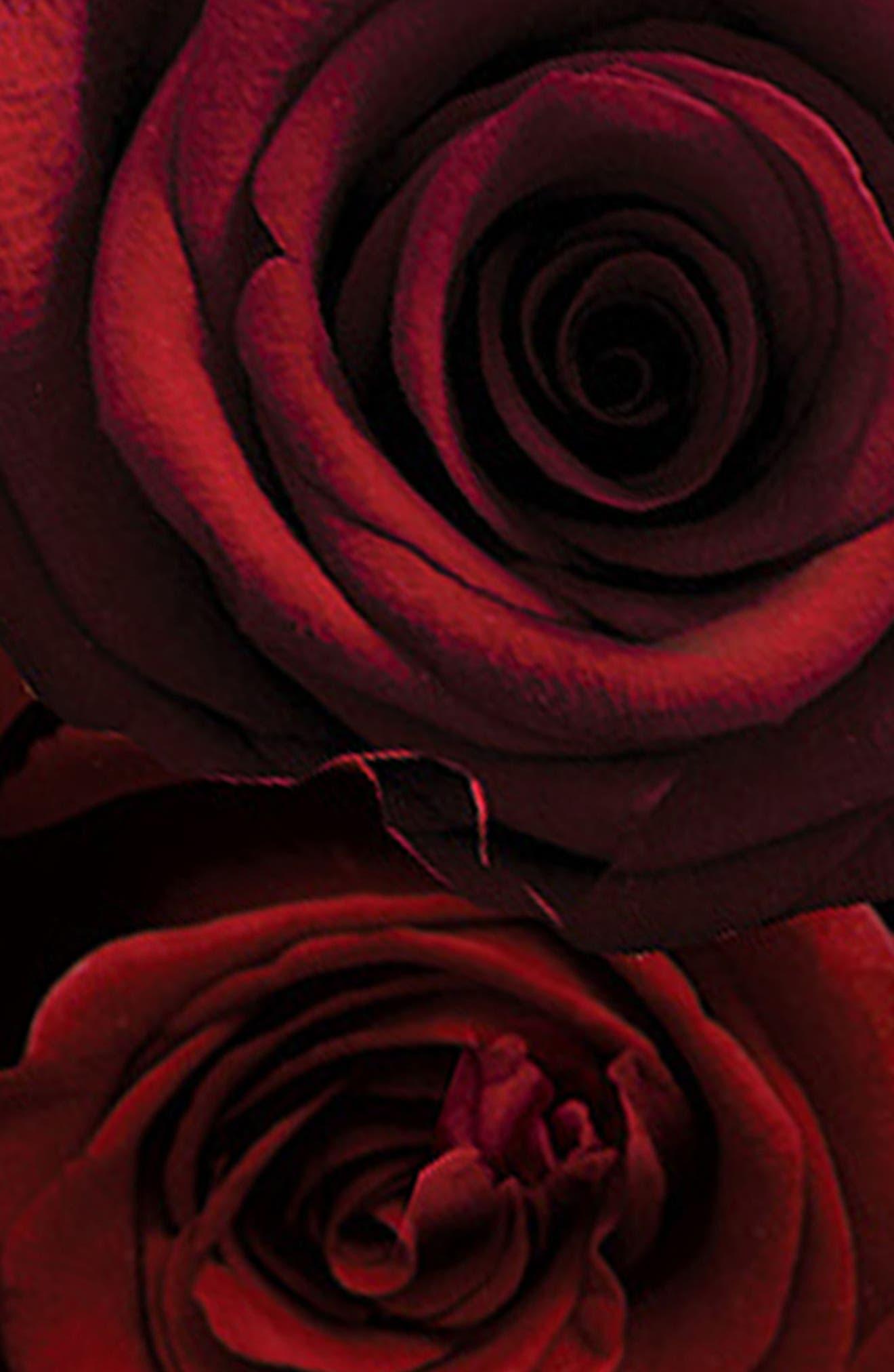 Alternate Image 4  - Jo Malone London™ 'Red Roses' Body & Hand Wash