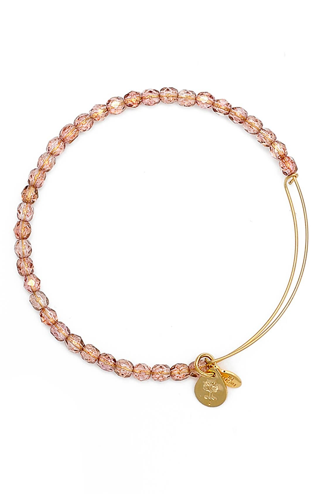 Alternate Image 1 Selected - Alex and Ani 'Rock Candy' Expandable Wire Bangle Bracelet