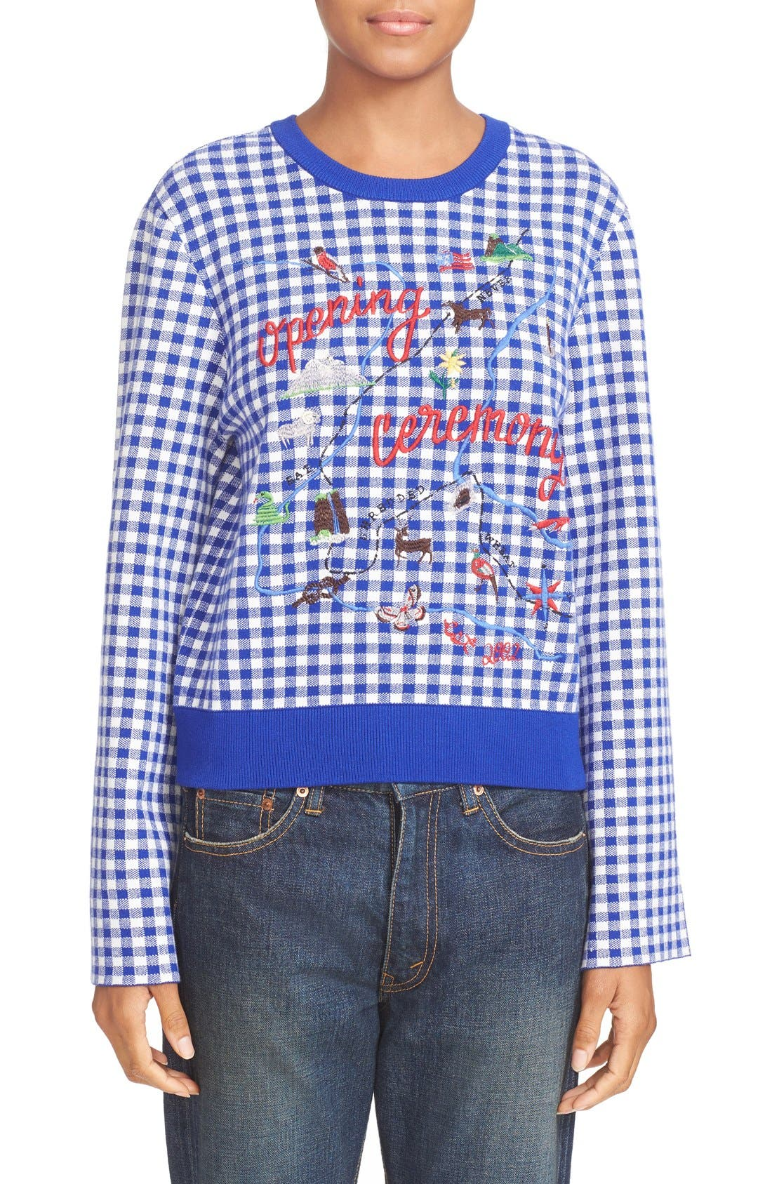 Main Image - Opening Ceremony Embroidered Map Gingham Sweater
