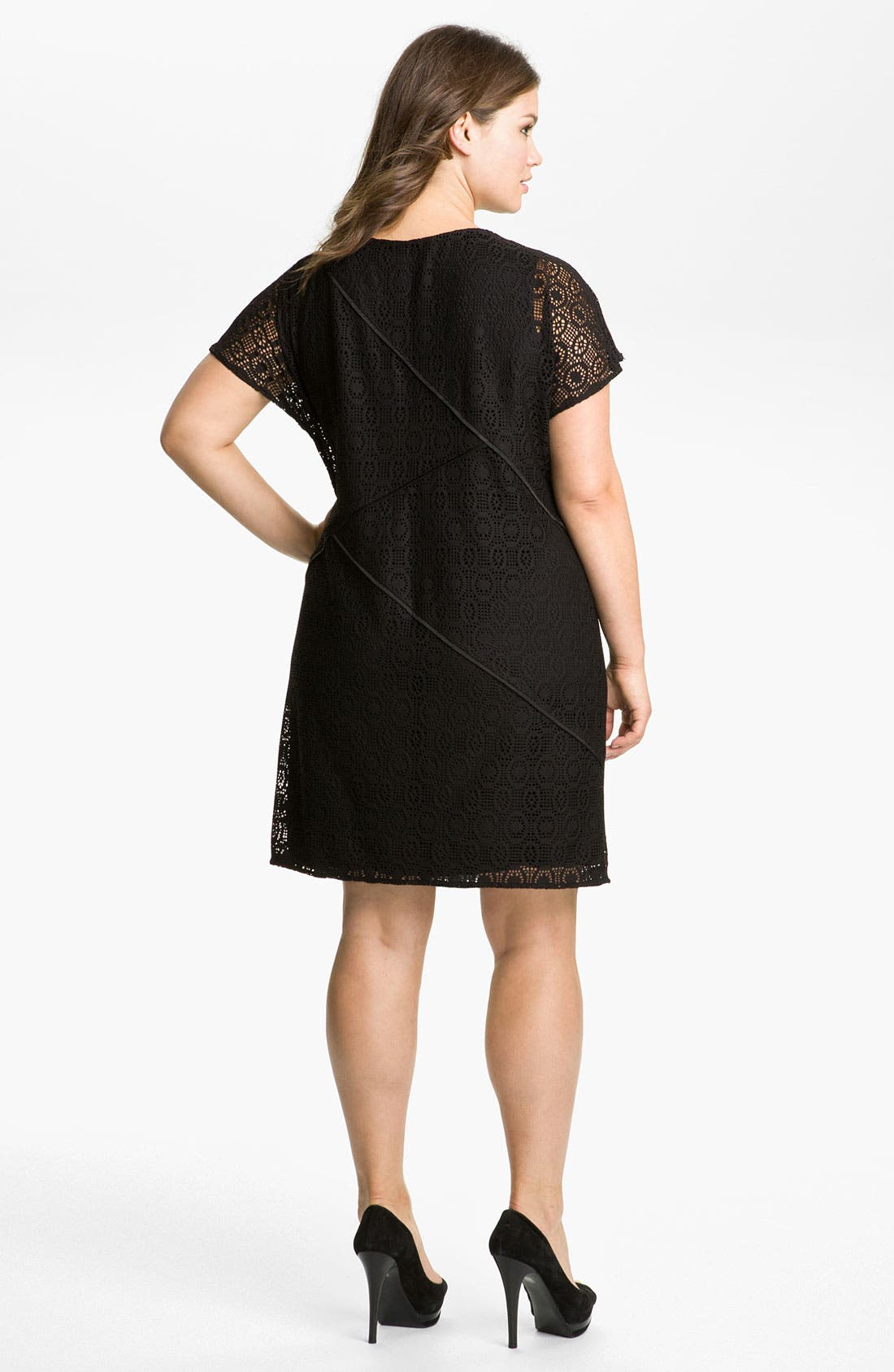 Alternate Image 2  - Adrianna Papell Seamed Lace Dress (Plus)