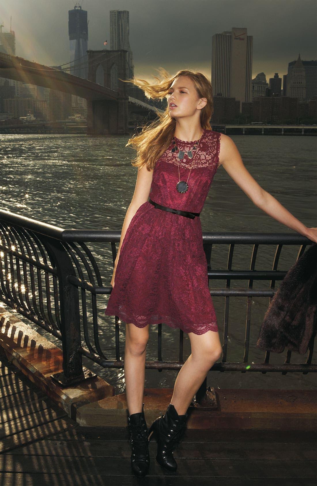 Alternate Image 5  - Taylor Dresses Sleeveless Lace Dress (Plus)