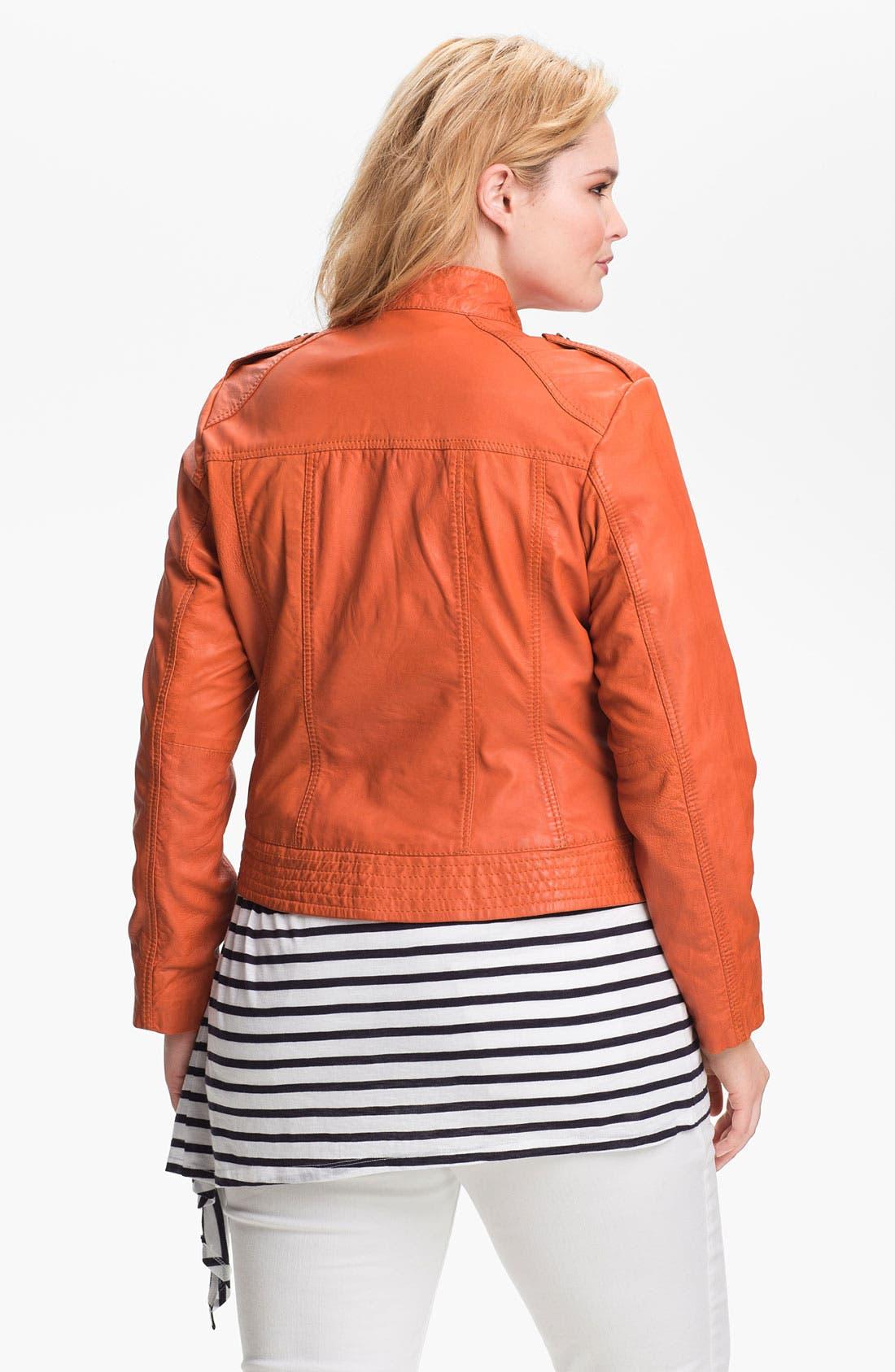 Alternate Image 2  - Bernardo Leather Scuba Jacket (Plus) (Nordstrom Exclusive)